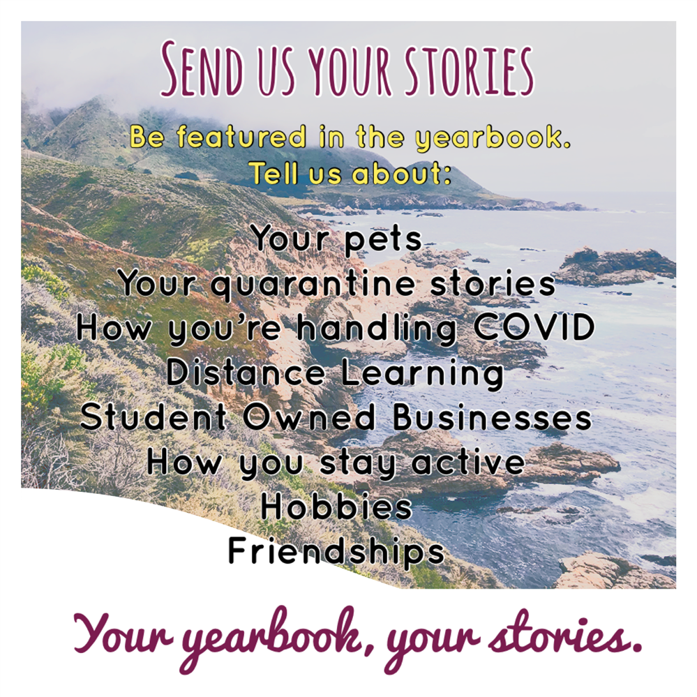 Send Us Your Stories to be in the Yearbook!